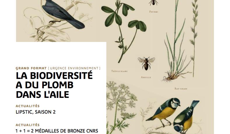 Parution d'en direct n°282 – La biodiversité a du plomb dans l'aile