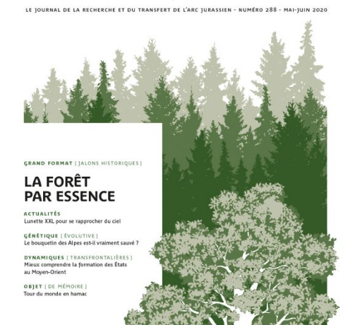 Parution d'en direct n°288 – La forêt par essence
