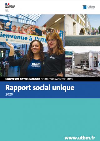 Rapport Social Unique Utbm